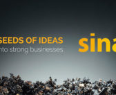 Sinapis: Nurturing seeds of ideas into strong businesses
