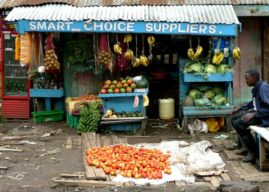 These are the only 3 types of business opportunities that exist in Kenya