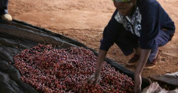 coffee farmers in Kenya