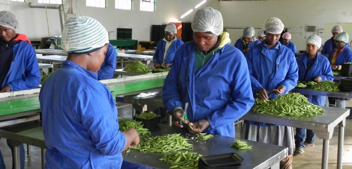 How supply side policies in Kenya can prioritize small businesses