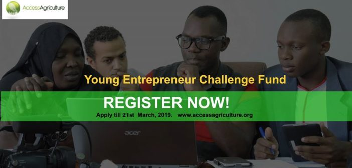 Young Entrepreneur Challenge Fund