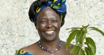 Wangari Maathai Impact Award